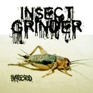 Insect Grinder