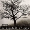Downfall of Gaia - Demo