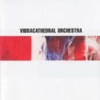 Vibracathedral Orchestra - My Gate's Open, Tremble By My Side
