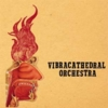 Vibracathedral Orchestra - Wisdom Thunderbolt