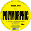 Polymorphic - Rock To Play