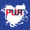 Pur:Pur - Understandable