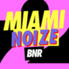 Boysnoize Records - Miami Noize