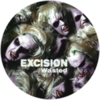 Excision - Wasted / Serious Business
