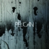 Pelican - Deny the Absolute & The Truce