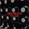 Steve Roach - Skeleton Keys
