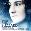 Robin Guthrie - White Bird in a Blizzard (OST)