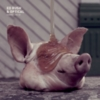 Noisia - FABRICLIVE 82 - Ed Rush & Optical