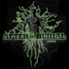 After the Burial - Rareform (Reissue)